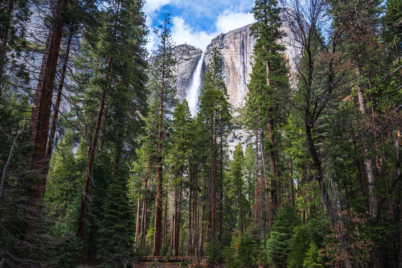 Yosemite Falls Elopement