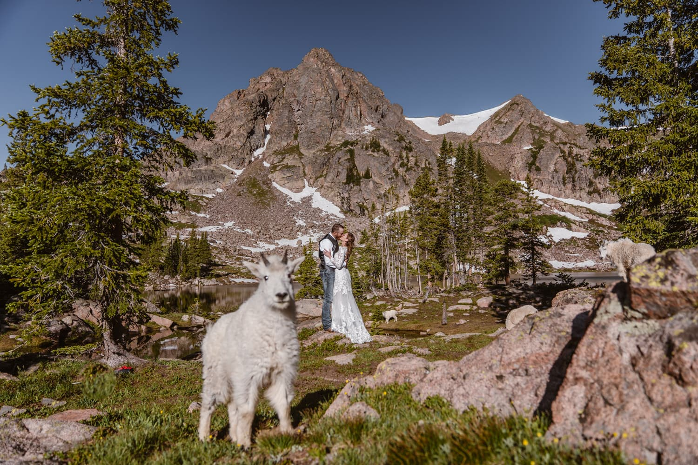 Backpacking Wedding